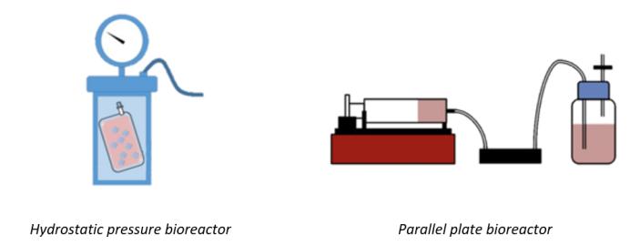 Image of bioreactors